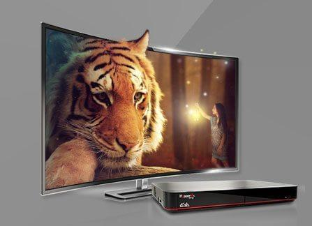 The Leader in HD TV - Sinclairville, New York - LANE TV & SATELLITE - DISH Authorized Retailer